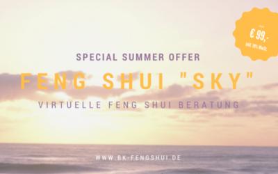 Tolles Angebot – Beratung per SKYPE für nur € 99,- !