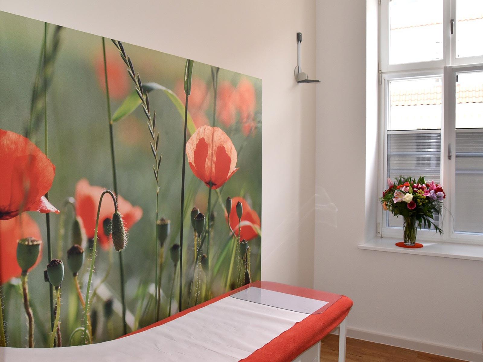 Feng Shui - Praxis Hansen - Behandlung im Mohnfeld