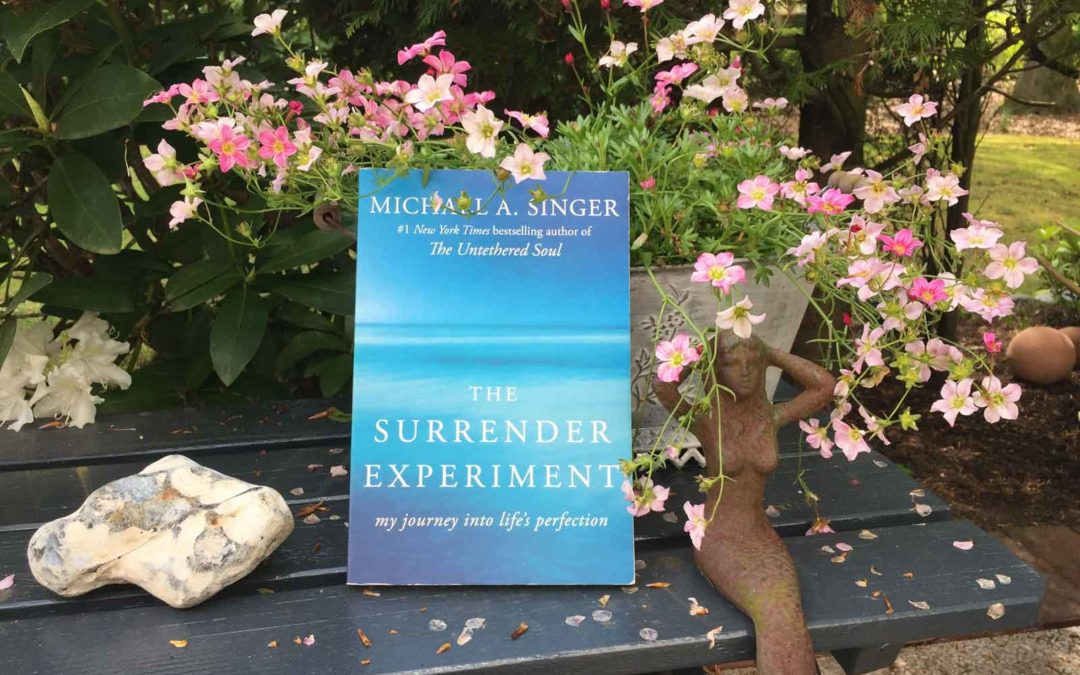 The Surrender Experiment – Reise in die Perfektion des Lebens