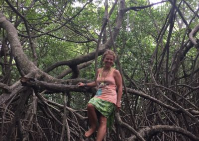 Mangroven Bentota River