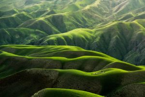 Grüne hügelige Berge