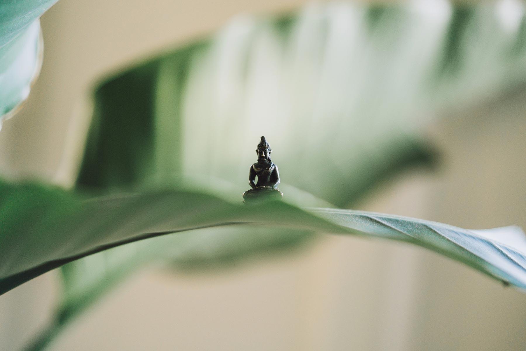 Kleiner Buddha sitzend auf Blatt