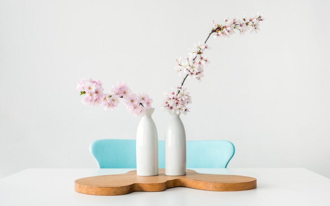 Feng Shui & Pflanzen – NATURPOWER für schöne Energie in deinen Räumen